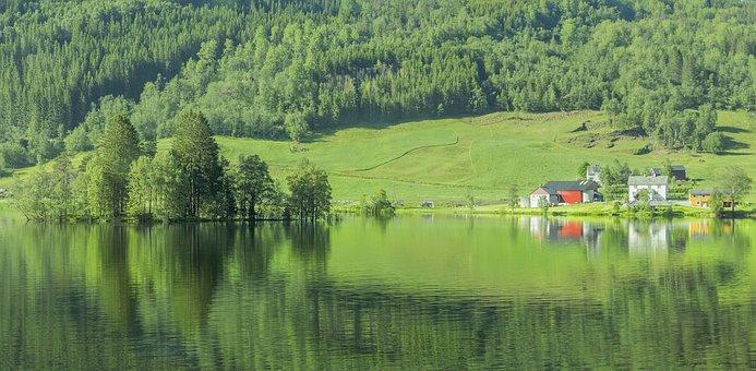 Norway, Lake, Green, Trees, Nature, Park, Water