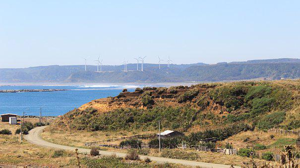 Wind, Energy, Forest, Beach, Power, Environment