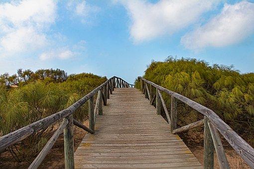 Gateway, Beach, Shrimp, Chipiona, Cadiz, Jaimepf
