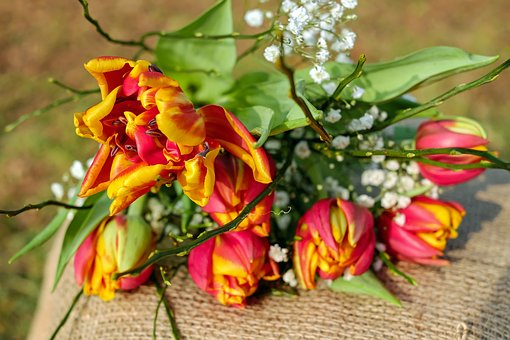 Tulips, Flowers, Tulip Bouquet, Bloom, Red Yellow