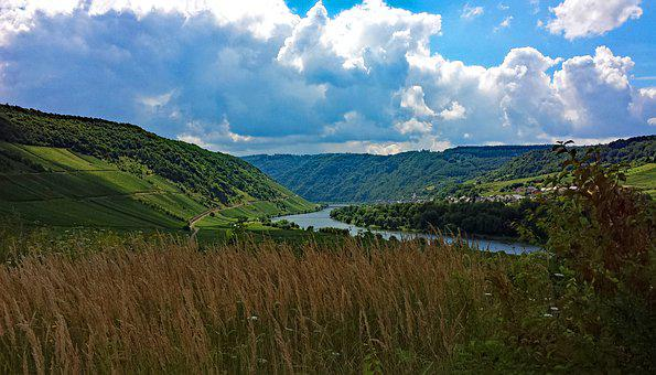 Briedel, Mosel, Sachsen, Germany, Wine, Vineyards