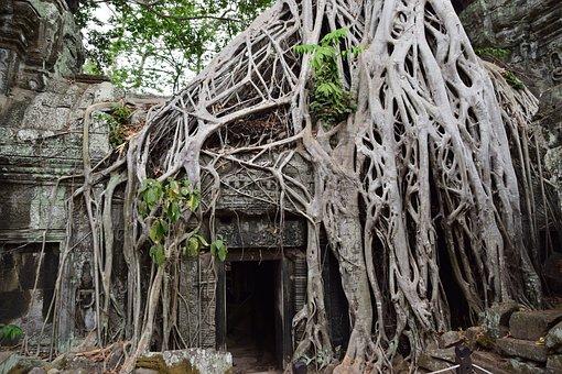Indiana Jones, Lara Croft, Temples, Cambodia, Angkor