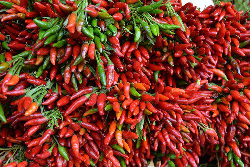 Red, Chilli, Edible, Pods, Food, Paprika, Piquant, Eat