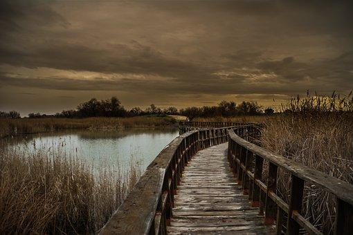 Daimiel, Nature, The Tables, Landscape, Park, Natural