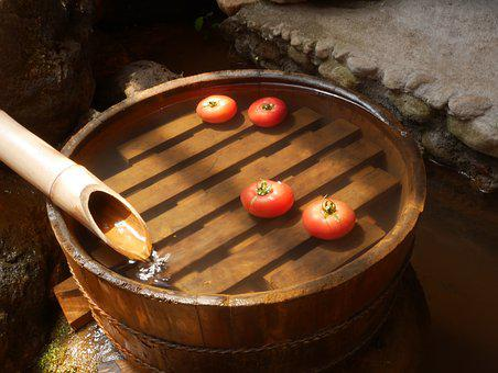 Tomato, Tub, Summer, Ryo, Water