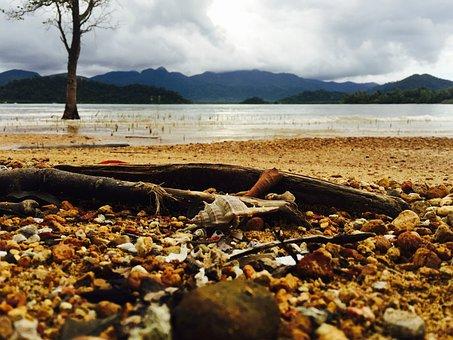 Kai Bei Beach, Koh Chang, Thailand, Crab, Beach, Sand