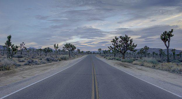 Road, Desert, Joshua, Tree, Empty, Highway, Travel