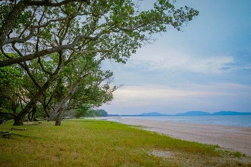 Beach, Tree, Sea, Sand, Blue, Water, Island, Landscape