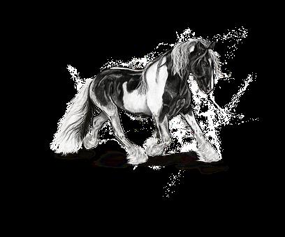 Horse, Mottled, Art, Animals, Painting