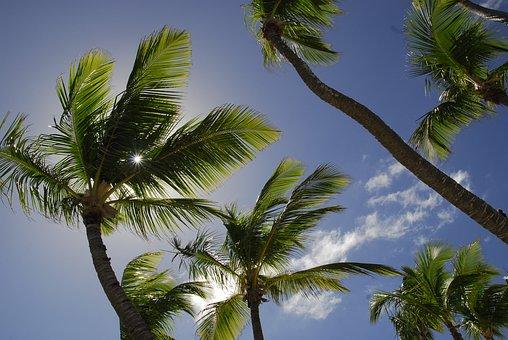 Dom Rep, Dominican Republic, Caribbean, Holiday, Sun