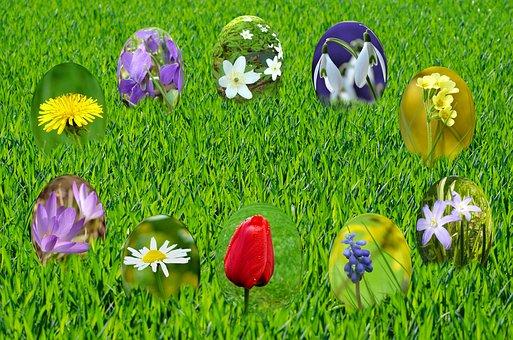 Easter, Eggs, Spring, Sun, Grass, Green, Sky, Blue