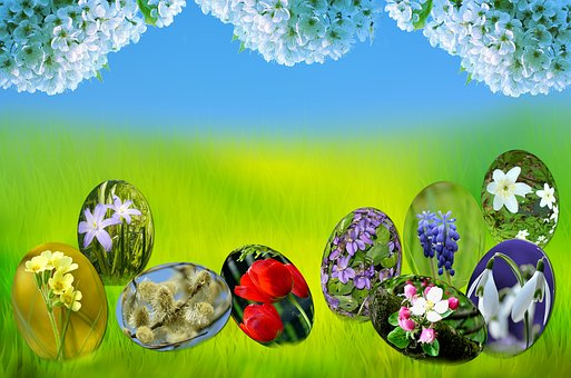 Easter, Eggs, Spring, Sun, Grass, Green, Nature, Blue