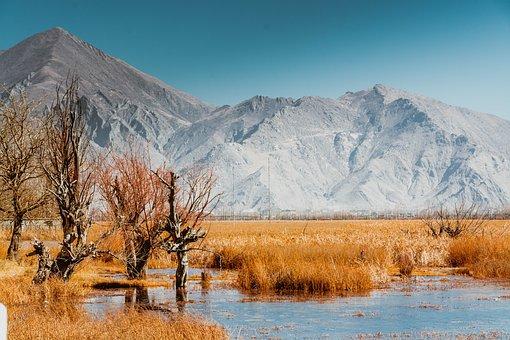 Tibet, Lalu Wetland, Nyainqentanglha