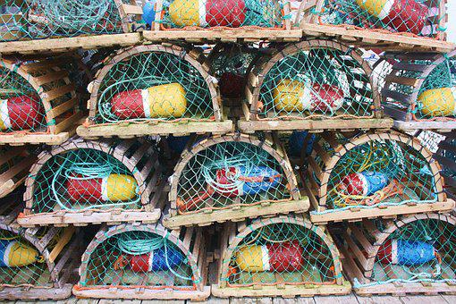 Lobster Cage, Lobster, Cage, Fishing, Maritime, Marine