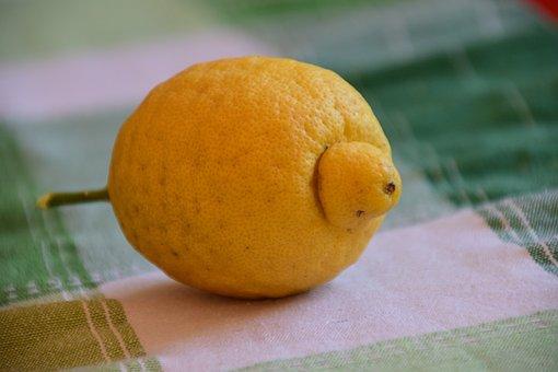 Lemon, Sour, Yellow, Fruit, Vitamins, Kitchen, Eat