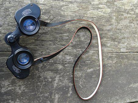 Wood, Binoculars, Outdoor, Activity, Watching