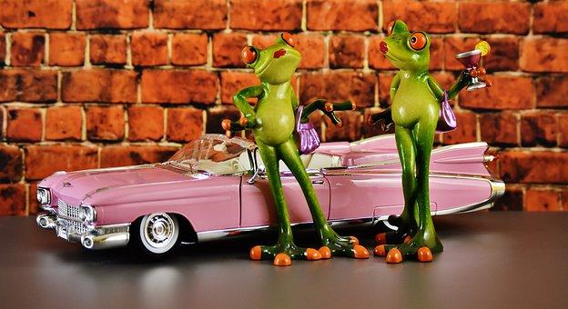 Cadillac, El Dorado, Frogs, Chicks, Arrogance, Cocktail