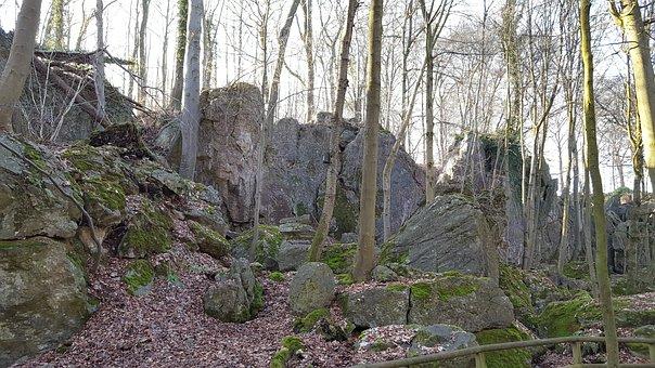 Forest, Nature, Landscape, Stones, Rock, Idyllic