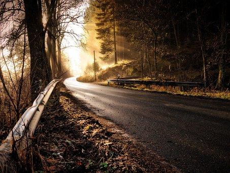 Road, Forest, Sunshine, Haze, Mysterious Light