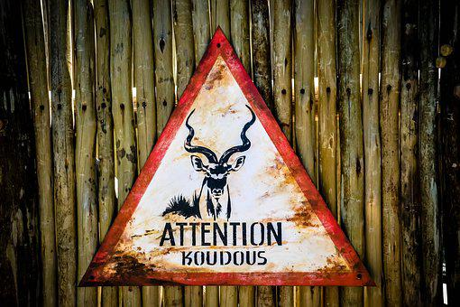 Signs, Brand, Ban, Animal, Zoo, Zlin, Rust, Rusty