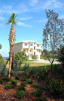 Beach Home, Florida, Tropical, Palm Trees, Landscape