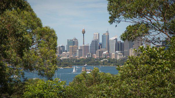Canon, Sydney Harbour, Centrepoint, Yachts, Summer