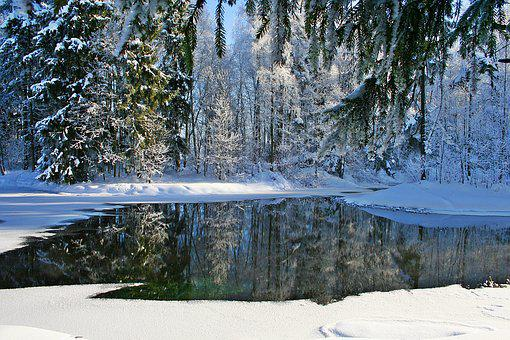 Winter, Gatchina, Frost, Nature, Stroll, Cold, Snow