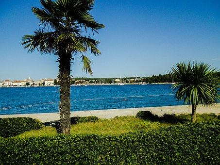 Summer, Palm, Croatia, Holiday, Sky, Clouds, Beach, Sea