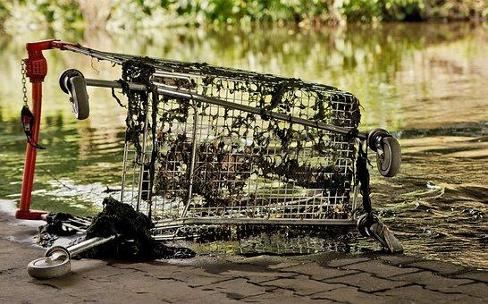 Shopping Cart, River, Destruction, Seaweed, Garbage