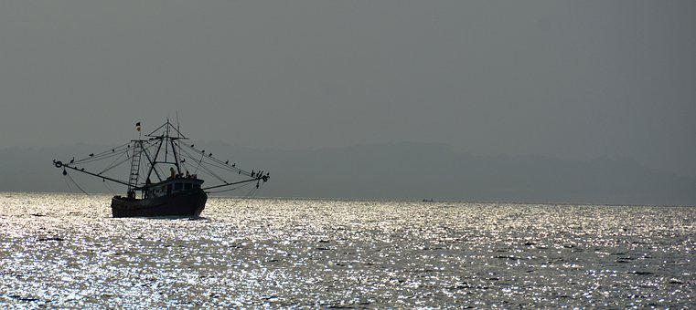 Shrimping In Sunset, Veracruz Coast, Panama