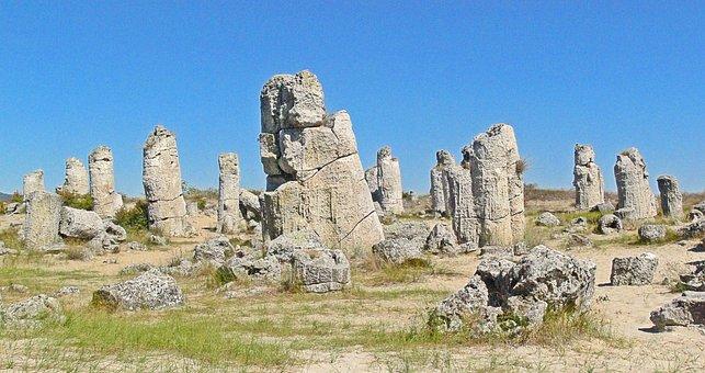 Stone, Forest, Stone Forest, Fossil Forest, Stones