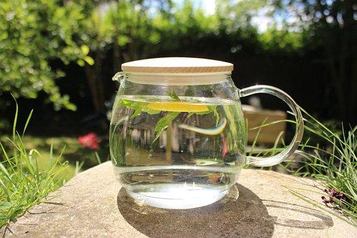 Tea, Infusion, Fruity Water, Mint, Lemon, Water, Hot