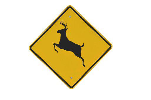 Deer Crossing, Sign, Wildlife, Caution, Deer, Symbol