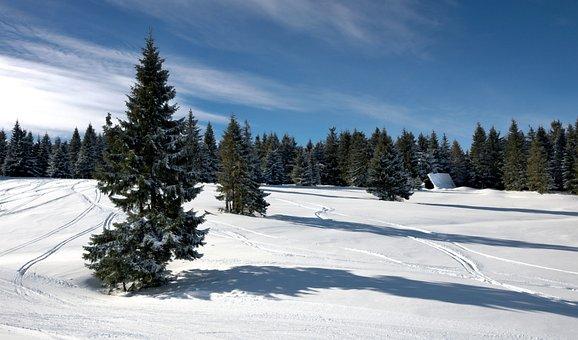 Landscape, Winter, Forest, Mountains, Beskids, Snow