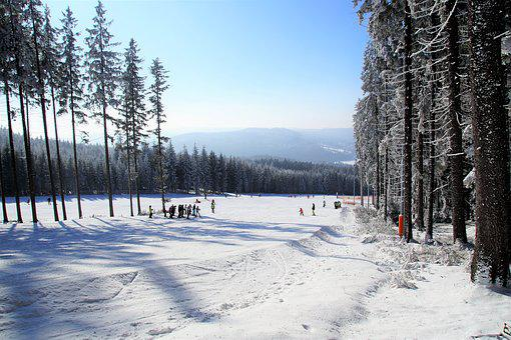 Winter, Snow, The Ski Slope, Ski Areal, Ski Resort