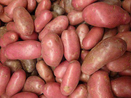 Potatoes, Spuds, Potato, Vegetable, Organic, Nutrition