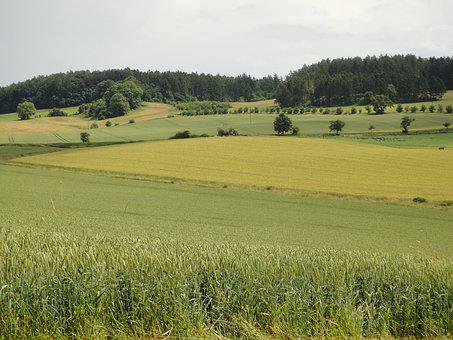 Resin, Lower Saxony, Südharz, Germany, Landscape