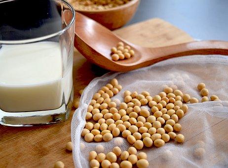 Soy Milk, Soy, Soybean, Soy-milk