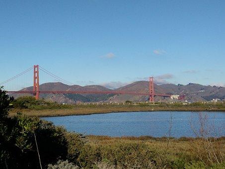 Bridge, San Francisco, America, California, Golden Gate