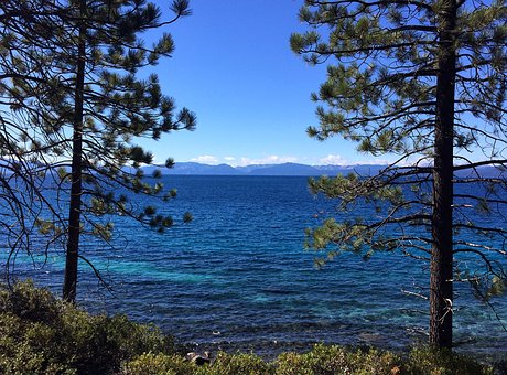 Tahoe, Lake, Lake Tahoe, Blue, Water, Trees, Sky