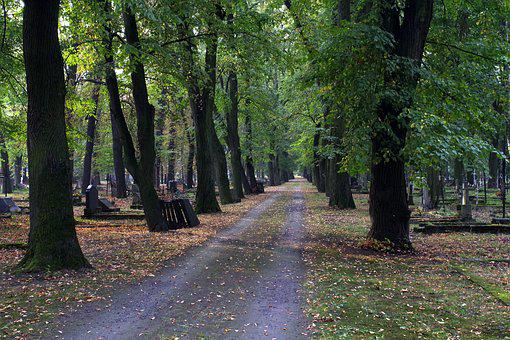 Alley, Cemetery, Autumn, It Went Down The List