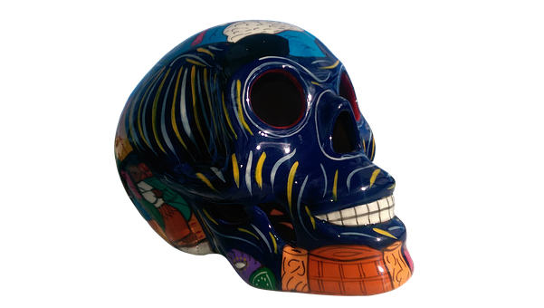 Isolated, Skull, Colorful, Skeleton, Death, Dead, Head