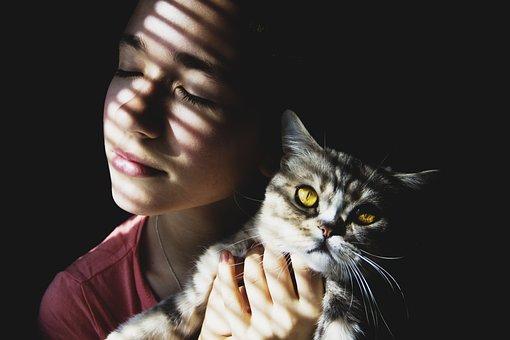 Girl, Cat, Beauty, Emotions, Hair, Man, Photoshoot