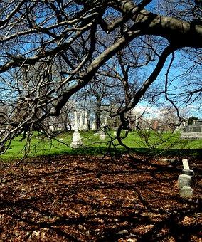 Cemetery, Graves, Graveyard, Tombstone, Shadows