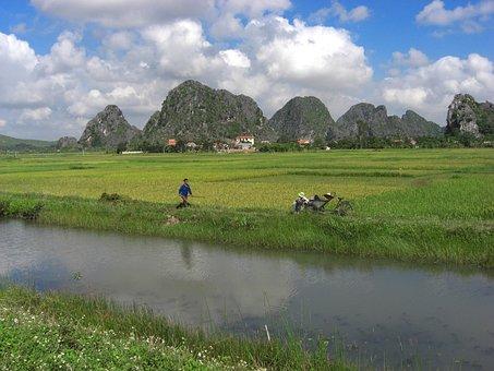 Vietnam, Landscape, River, Stream, Water, Reflections