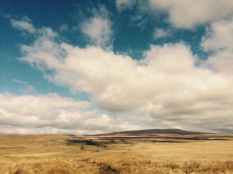 Wales, Brecon Beacons, Brecon, Beacons, Nature