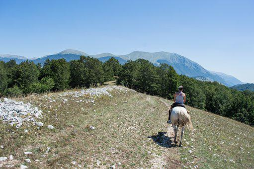 Horse, Horses, Mountain, Mountains, Mare, Foal, Animal