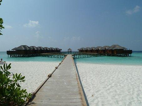 Paradise, Honeymoon, Beach, Bungalow, Sea, Summer