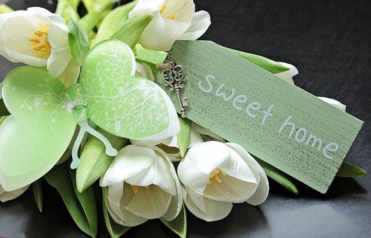 Tulips, Tulipa, Butterfly, Shield, Sweet Home, Key
