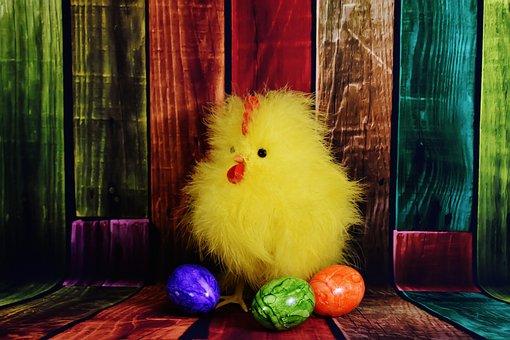 Chicken, Chicks, Easter, Egg, Easter Eggs